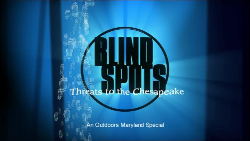 Blind Spots Title